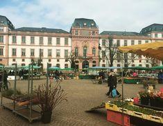 O castelo de Darmstadt e o mercado de flores e frutas 💗🌸💗🌸 #darmstadt #schloss #schlossdarmstadt #markt #viagemjovem Louvre, Street View, Building, Travel, Road Maps, Castle, Destinations, Darmstadt, Viajes