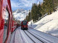 Treno del Bernina: i trenini rossi si incrociano Swiss Railways, Train, Cinque Terre, Golden Gate Bridge, Trekking, Wonders Of The World, Switzerland, Wander, Travel Destinations