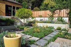 courtyard garden - modern - Landscape - San Francisco - Huettl Landscape Architecture