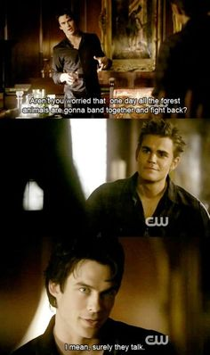 animals, damon, diaries, fight, funny, stefan - inspiring picture on ...