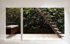 Wandgärten und wie sie funktionieren - Pflanzen in Szene setzen