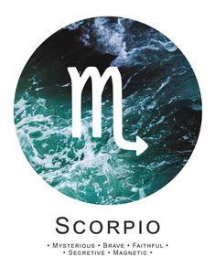 Scorpio ~ mysterious, brave, magnetic