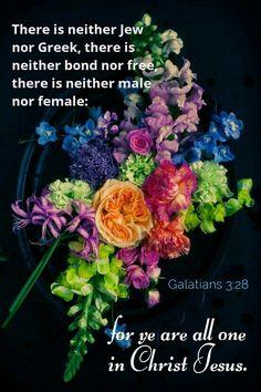 Galatians 3:28 KJV
