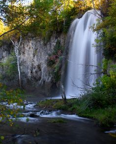 Spearfish Canyon is located in the Black Hills of South Dakota, and it is home to beautiful scenery and lots of wildlife.