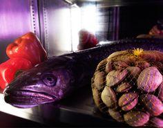 Merluza de pincho de Burela y malla de almejas de Carril...  www.restaurantecasalucio.com