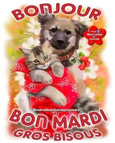 Bon Mardi Humour, Facebook, Hui, Emoji, Messages, Happy Tuesday, Happy Monday, Days Of Week, Wednesday