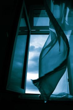 When a door closes a window opens the scent of possibilities beacons me to follow...wtb