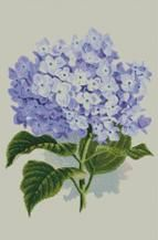 Cross Stitch Chart Pattern of Hydrangea Bloom