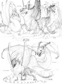 Another round of sketches; been pretty busy the last few days, so here& what I put up for days 13 and 15 (I have a valentines card I need to re-scan to put up here for day Top half are al. Creature Concept Art, Creature Design, Creature Drawings, Animal Drawings, Dragon Anatomy, Dragon Sketch, Cool Dragons, Dragon Design, Monster Art