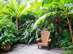 You don't need to live in the tropics to create a lush retreat. HGTV.com shows you how to create your own leafy getaway in your own backyard.