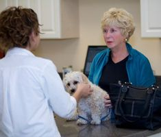 Vetstreet's Dr. Patty Khuly lists the 10 questions that would make a vet's (and owner's) life much easier — if only pet owners would ask them.