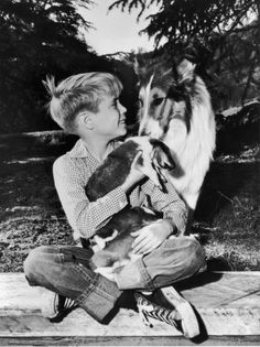 American child actor Jon Provost holds Collie puppies his lap while sitting with Lassie in a promotional portrait for the TV show, 'Lassie,' Photo: Hulton Archive, Getty Images / Moviepix Collie Puppies, Collie Dog, Dogs And Puppies, Doggies, Jon Provost, Famous Dogs, Famous People, The Lone Ranger, Online Photo Gallery