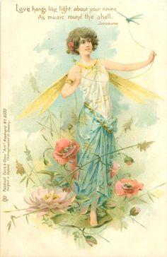 1902 Dragonfly Fairy Postcard