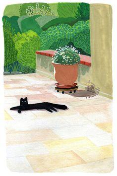 Coyote Atelier illustration inspiration: Solene Chevaleyre