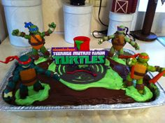 Nickelodeon Teenage Mutant Ninja Turtle Cake!