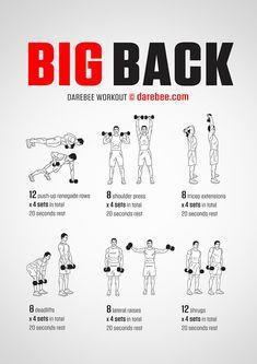 Big Back Dumbbells