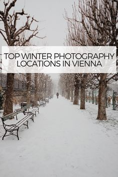 Snow in Vienna! What else can be so exciting when the streets and public parks are covered with elegant white snow. For those who are keen to capture these magnificent places here are some tips and and recommended spots in Vienna.