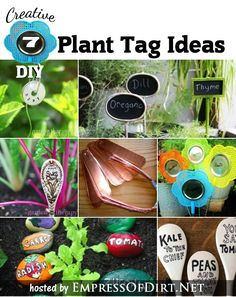 Creative plant tag and marker ideas with DIY instructions - fun ways to keep track of plant names in your garden.