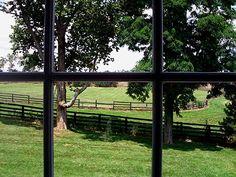 Kentucky Horse Farm - Paris KY by Lizette Fitzpatrick, www.lizette.us