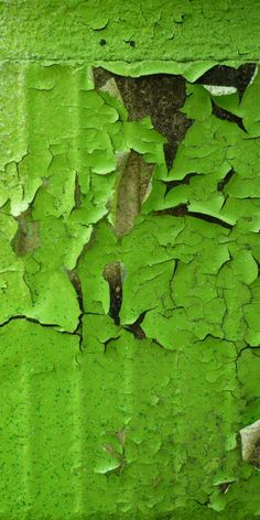 Abgeblätterter grüner Lack