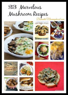 National Mushroom Month 23 Marvelous Mushroom Recipes #nationalmushroommonth