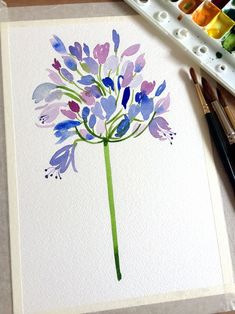 Day 7...Agapanthus #watercolorarts