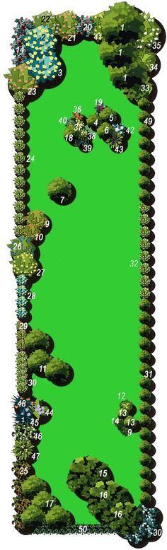 Aménagement d'un jardin tout en longueur (avec nom des plantes) Plus