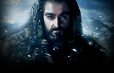 Thorin Oakenshield is the leader of the dwarf company