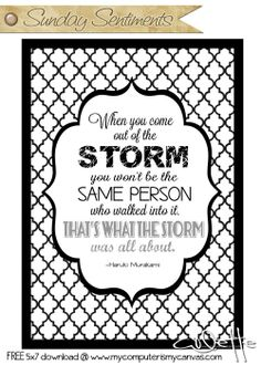 Inspirational Quote Series... Sunday Sentiments by My Computer is My Canvas - surviving the storm