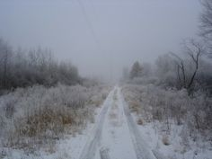 snow and rooaaaadd