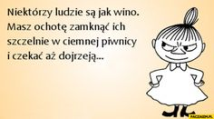 Niektórzy ludzie są jak wino masz ochotę zamknąć ich szczelnie w ciemnej piwnicy i czekać aż dojrzeją Wine Meme, Weekend Humor, Funny Memes, Jokes, Wall Quotes, Man Humor, Motto, Sarcasm, Sentences
