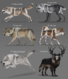 Loads O' Wolf adopts: Short auction CLOSED by Chickenbusiness on DeviantArt Cute Animal Drawings, Animal Sketches, Fantasy Wolf, Fantasy Art, Mythical Creatures Art, Creature Drawings, Anime Wolf, Creature Design, Furry Art