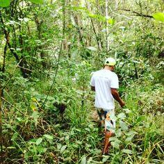 Uma beleza inenarrável. Reserva sapiranga #crneles #eco #sustentabilidade #vamossereco #canecas #mug #vamosquevamos by cr_personalizacao http://ift.tt/1sDYLZG