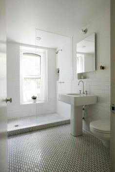 walk-in shower with fixed glass for guest bathroom (in lieu of closed shower OR curtain)