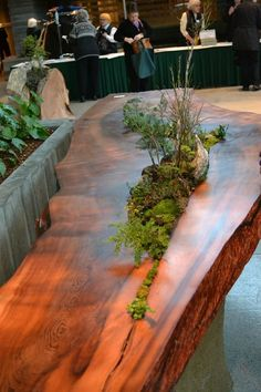 This awesome table was made by Live Edge Woodworks    http://liveedgewoodworks.com/ and blogged by http://outlawgarden.blogspot.com/2013/02/lets-all-go-to-lobby.html