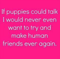 Or kittens...