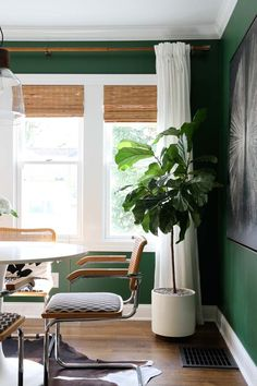 Roundup : Faux Plants & Greenery – Room for Tuesday - Modern Bamboo Curtains, Bamboo Blinds, White Curtains, Matchstick Blinds, Curtains Over Blinds, Woven Blinds, Roman Curtains, Mini Blinds, Window Blinds