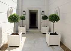 Planters and Topiaries