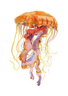 Jelly Fish  - Animal Painting - A4 11.7x8.3in - Original Watercolor  Art- Nursery Art Print