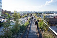 Gallery of NYC's High Line Wins the 2017 Veronica Rudge Green Prize in Urban Design - 1