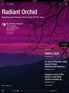 Flip through Radiant Orchid by Andrea Folsom http://flip.it/gHyak