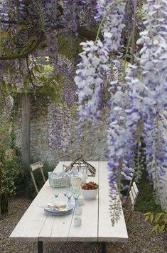 Wisteria and dining al fresco… Love Garden, Dream Garden, Home And Garden, Cacti Garden, Garden Living, Outdoor Rooms, Outdoor Dining, Outdoor Gardens, Dining Area