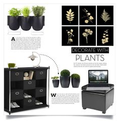 """""""Grow a Little: Planters"""" by dolly-valkyrie ❤ liked on Polyvore featuring interior, interiors, interior design, home, home decor, interior decorating, Safavieh, Neatfreak, Authentics and plants"""
