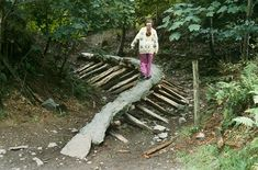 grizedale forest sculptures - Google Search