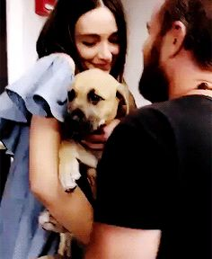 Crystal Reed and J.R. Bourne with a puppy - Howler Con 2016 gif