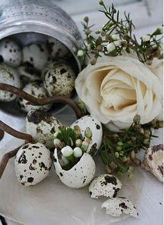 ♔  Easter