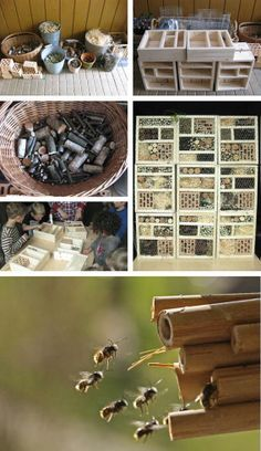 Made a stackable insect hotel at childrens birthday. Read more: http://dieraumfee.blogspot.com/2011/11/schoner-wohnen-fur-biene-maja.html