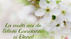 Felicitari de Sf Constantin si Elena – Căutare Google Sf Constantin, Google