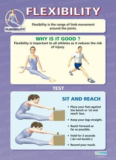 From our Physical Education poster range, the Flexibility Poster is a great educational resource that helps improve understanding and reinforce learning. Health And Physical Education, Physical Fitness, Special Education, Gcse Pe, Pe Class, Pe Ideas, School Posters, Health Fitness, Kids Fitness