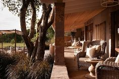 House Tour: Serengeti House - Design Chic
